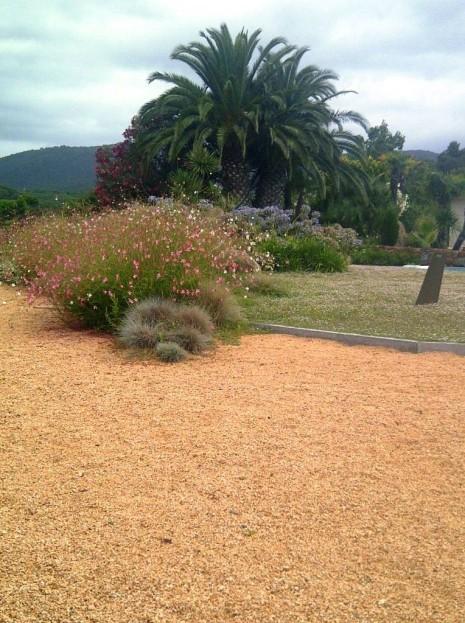 SAULO PARC - jardí amb sauló