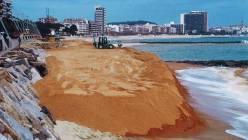 SAULO PARC - regeneració de platges - Sant Antoni de Calonge